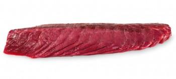 Descargado de Atún rojo salvaje de almadraba