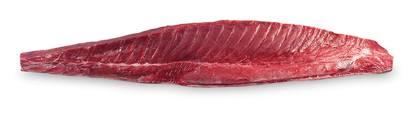 Lomo negro de atún rojo salvaje de almadraba